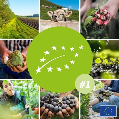 1. #Bio : comment l'Union européenne façonne le marché du bio, avec le Commissaire Wojciechowski