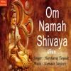 Om Namah Shivaya Dhun