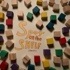 Spot on the Shelf (video in description)