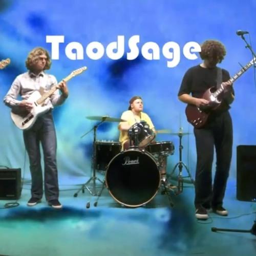 Toad Sage - Hugh Flyin' Bird