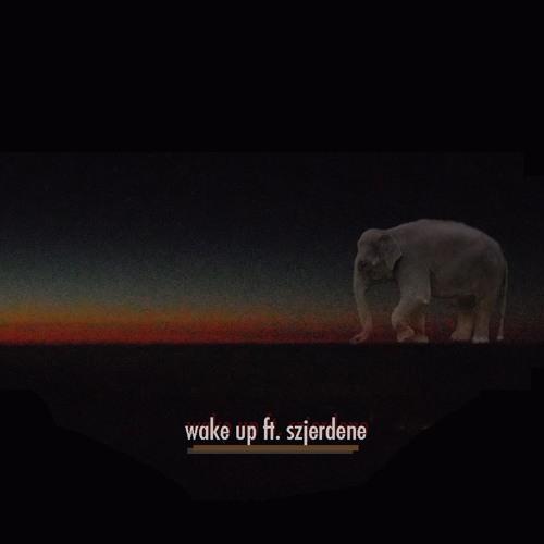 Wake Up (feat. Szjerdene)
