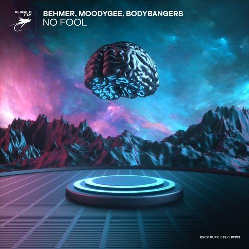 Behmer, Moodygee, Bodybangers - No Fool
