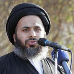 جهاد علماء جبل عامل في مواجهة أحمد باشا الجزار -6  السيد هاشم الهاشمي 13 - 4-2021