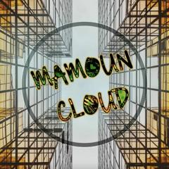 Tiësto & Ty Dolla $ign - The Business (Mamoun Bakir Remix)