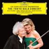 Violin Romance No. 1 in G Major, Op. 40 (Live)
