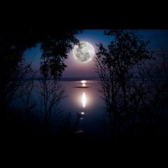 Bed Time Meditation - English
