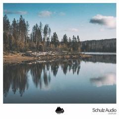 [C&SPL061] schulz audio