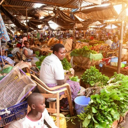 Tari Manamike - Impact Of Covid 19 On The Informal Economy