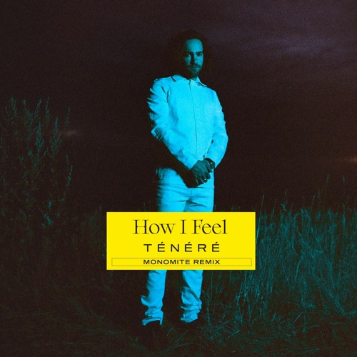 Ténéré - How I Feel - Monomite Remix (ft. Clara Sergent)