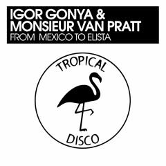 PREMIERE: Igor Gonya & Monsieur Van Pratt - From Mexico To Elista [Tropical Disco Records]