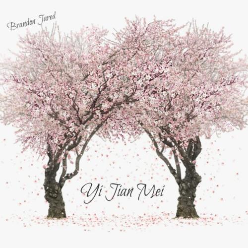 Yi Jian Mei Remix