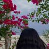 Download جادلٍ ترقص لها نجد العذيه|محمد العتيبي Mp3
