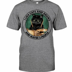 I Like Cats And Drums And Maybe 3 People Shirt