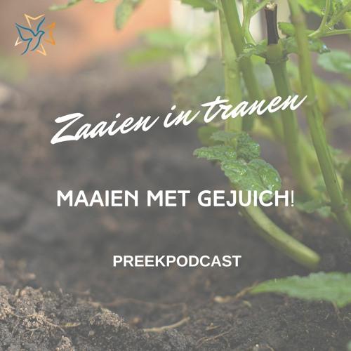 Zaaien in tranen, maaien met gejuich: preekpodcast 27 Juni 2021