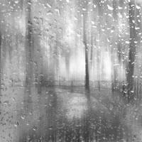 Ashot Danielyan - Rain (Pianobook - Isolation Piano)