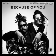 Because of You (feat. Amerildo de Krijger)