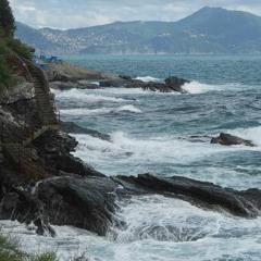 Small But Safe Steps - Passi Piccoli Ma Sicuri
