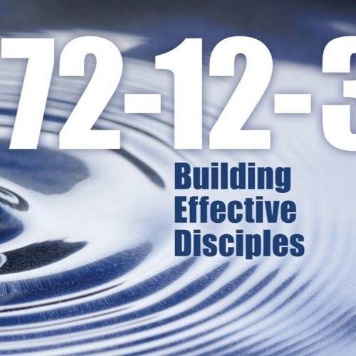 12 - Deepening Discipleship through Smaller Groups - Rev Peter Nielsen