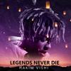 Alan Walker, Post Malone, Linkin Park, Juice WRLD - Legends Never Die (Mashup)