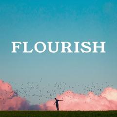 Flourish (feat. Shwirl)