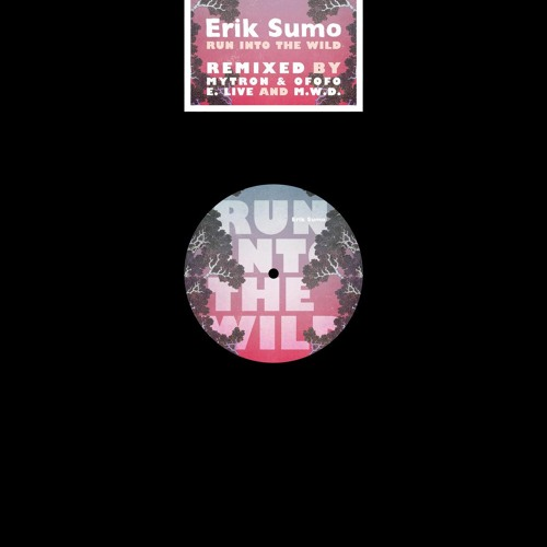Erik Sumo - Run Into The Wild (M.W.D. remix)