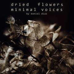 Dried Flowers Minimal Voices (disquiet0435)