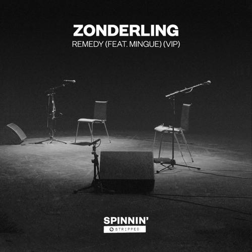 Remedy (feat. Mingue) (VIP)