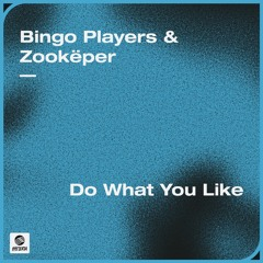 Bingo Players & Zookëper - Do What You Like