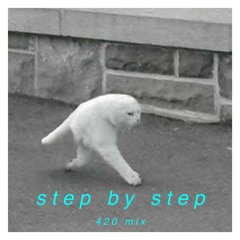 step by step (420 remix)