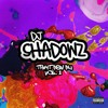 That New Nu VOL . I - Mixed By DJ Shadowz
