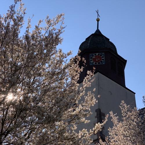 Kirchenführung Effringen