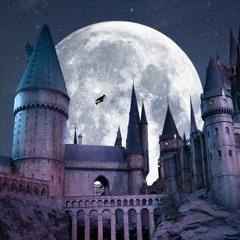 "Live Electribe n°1 - Nat'MOS - ""WizardWizard"""