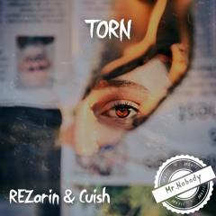 REZarin & Cuish Feat. Sam Welch - Torn (Mr.Nobody Remix)