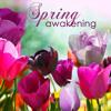 Spring Equinox 2015 (Musique Zen)