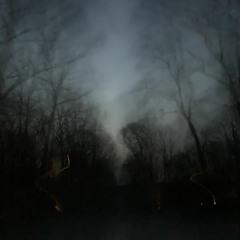 whispers through the dark (prod. by metlast)