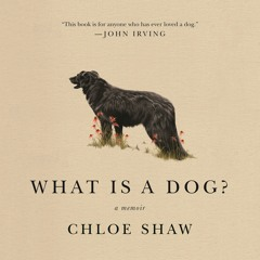 What Is A Dog? by Chloe Shaw, audiobook excerpt