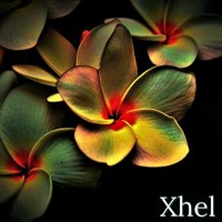 Color Contrasts mixed by Xhel Artwork