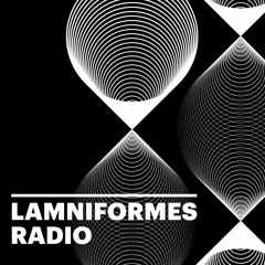 Lamniformes Radio Episode 52 - Stephen Schwegler (Seputus, Pyrrhon, Weeping Sores)
