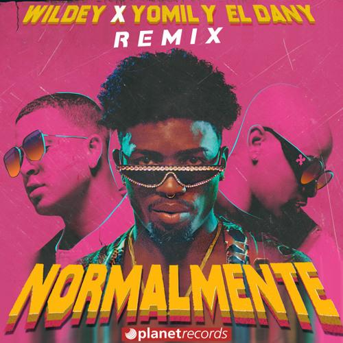 Normalmente Remix (with Yomil y El Dany) Song