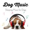Calming Dog Sleep Music