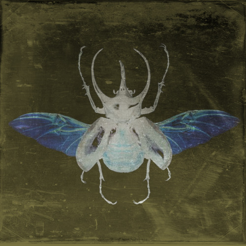 Life In The Hive (Rmx) *free download*