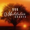 Meditation Spa Music Zen