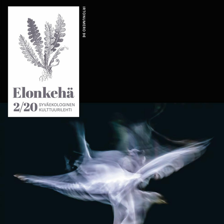 Havuhattu & Elonkehä: Liike(2/20)