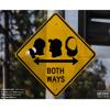 Download Both Ways (feat. Keith Ape & Yung Gleesh) Mp3