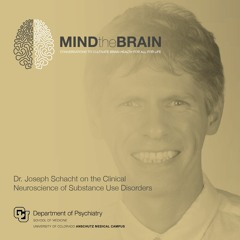 Dr. Joseph Schacht on the Clinical Neuroscience of Substance Use Disorders