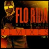 Wild Ones (feat. Sia) (J.O.B rock rework)