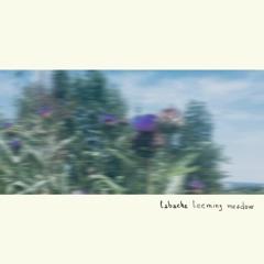 Premiere: Tabache - Balanced