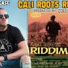 Collie Buddz - Hold Firm Cali Roots Riddim 2020