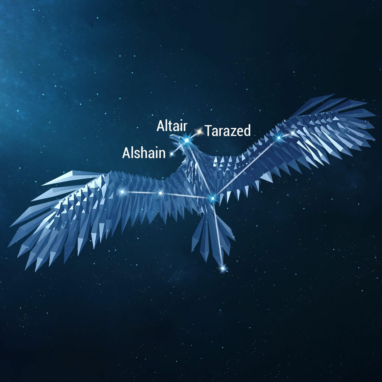 9/6/21 - Aquila the Eagle