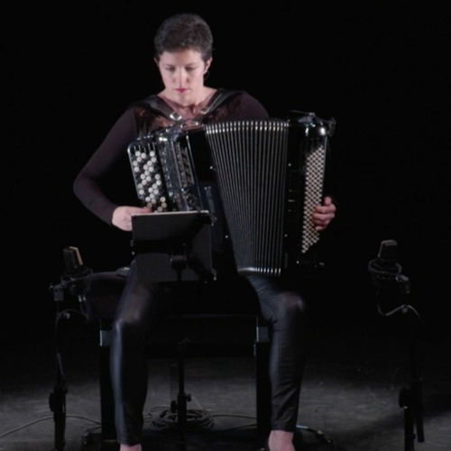 Her Majesty the Fool (2020) - for accordion and electronics